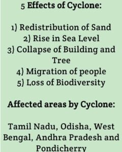 Effects of Cyclone